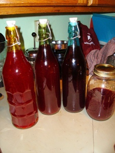 Image of Orange Cranberry Spice Vodka courtesy of Flickrcc 17287632 at N00/5192950427