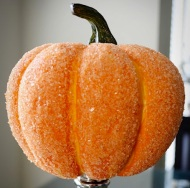 """Salt your pumpkin: Kosher salt and white glue """"crystallizes"""" a pumpkin. I bet it even works well to keep the mold away. Image courtesy of Bobvila.com."""