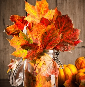This mason jar and silk leaves arrangement can be made quickly and emulates a country charm. Image courtesy of http://www.punchbowl.com/p/decorating-for-thanksgiving