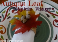 Posed Perfection gives a great tutorial for these acorn and leaf rings at: http://www.posedperfection.com/2012/11/diy-autumn-leaf-napkin-rings.html